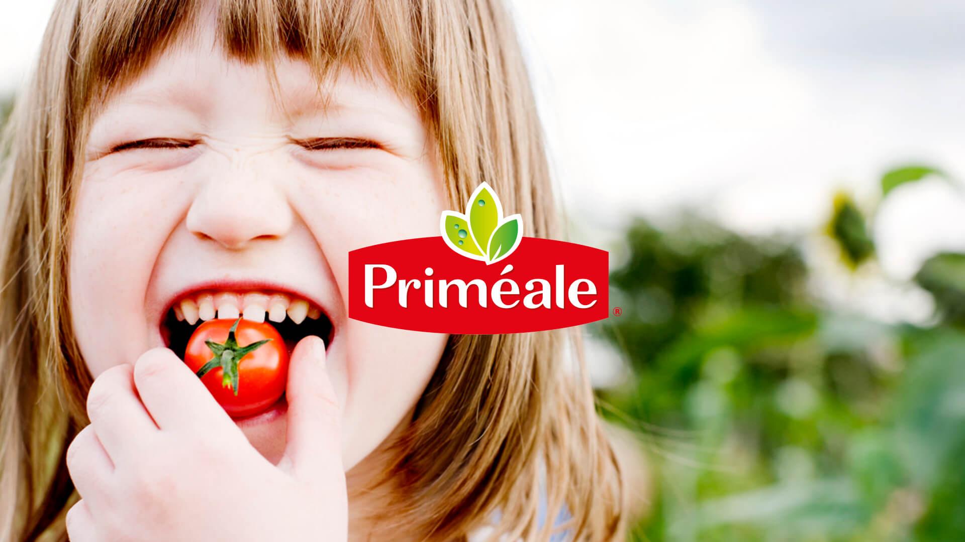 Logotype Primeale website development