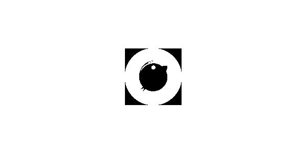 Logotype of Socialtrips. Branding
